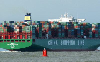 ocean freight costs and boosting margin