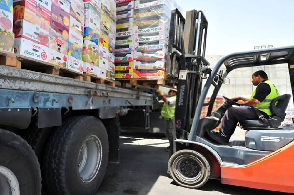 Importing Food into Dubai