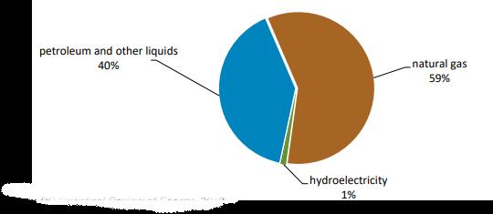 Primary energy consumption in the UAE-2018